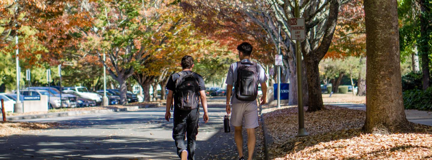Students walking on road